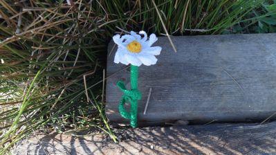 Margerite gehäkelt_2015-05-14 17.55.52