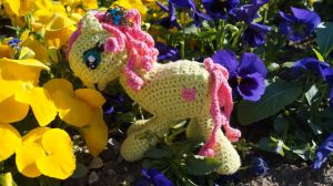 001_My little Pony_2016-05-08 17.21.21